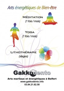 gakkodento_flyers_2015_energetiques
